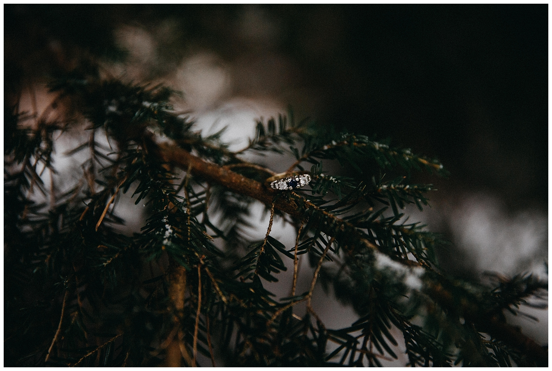 Pirbright Woodland Engagement Shoot